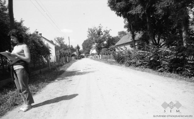 Vaška ulica, Melinci. 1971